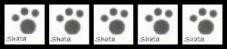 ShatasSignature_2-5